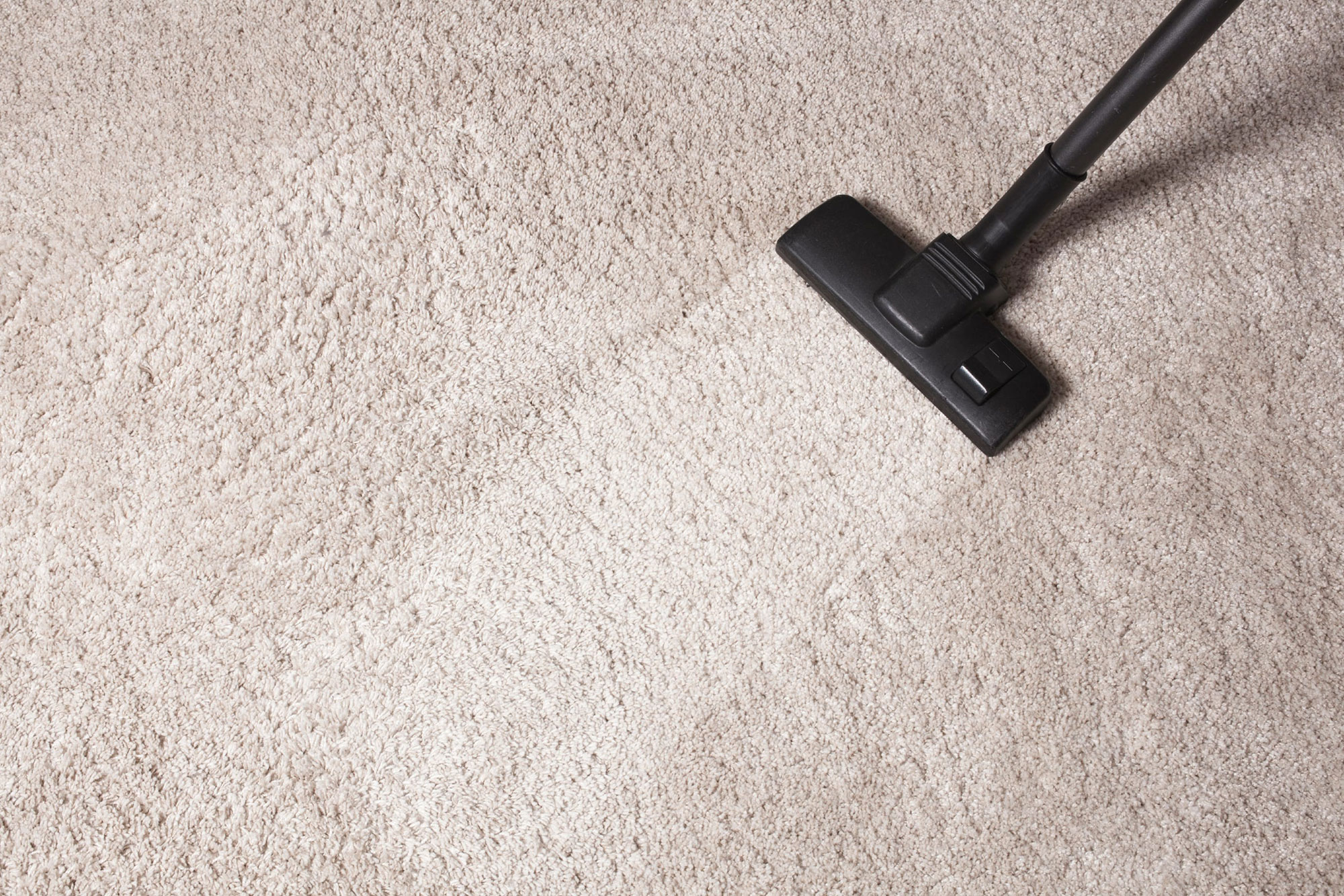 Carpet Cleaning<br /> Service