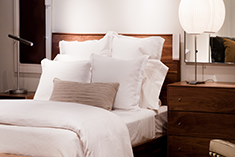 Mattress Cleaning<br /> Service